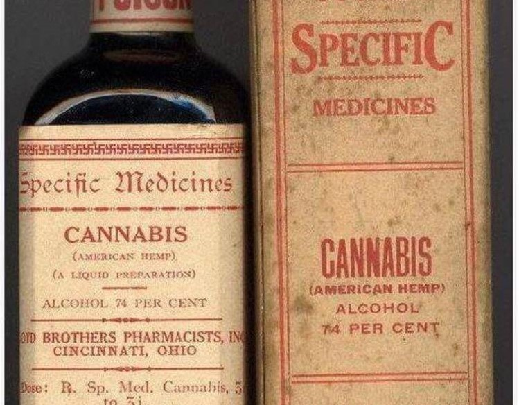 Historical Use of CBD Oil